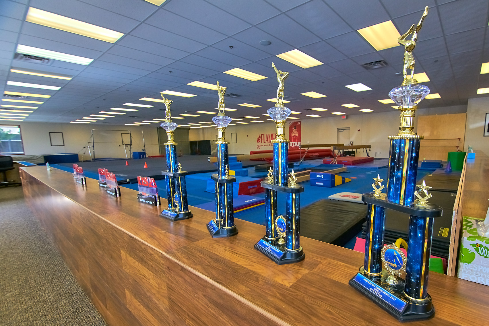 Award winning gymnastic team